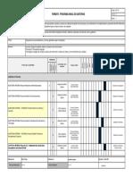 Se f01 Programa Anual de Auditorias v4 2015 Idpc Pub Web