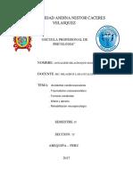 Universidad Andina Nestor Caceres Velasquezcaratula