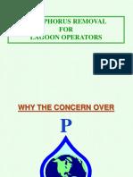 Wrd-ot-Phosphorus Removal for Lagoon Facilities