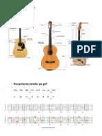 Prezentarea chitarei.docx