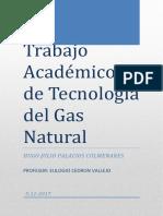 Trabajo Academico de Tecnologia Del Gas Natural Finalizado Hugo Palacios