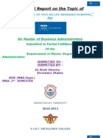 Dev Project Report 2010 Final