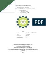 laporan praktikum uji protein