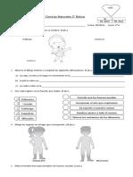 Evaluacion lecciones 1 2 y 3 unidad 3 ciencias naturales 2°