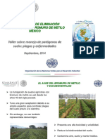 1.1 Plan Nacional Del Retiro de Bromuro en Mexico (Urbina)