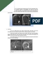 Patologi Shoulder Joint Dan Humerus
