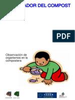 Clave Invertebrados Infantil1