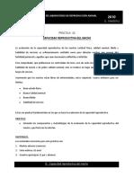 Practica 3-Capacidad Macho