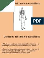 a3bc3_Cuidados Del Sistema Esquelético y Muscular