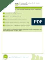 Guia Para La Evaluacion de Riesgos Psicosociales - Copia (3)