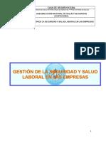 GESTION DE LA SEGURIDAD Y SALUD LABORAL EN LAS EMPRESAS.pdf