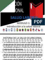 Modulo 1 Salud Laboral-1
