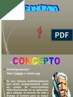 3. B. Ergonomia