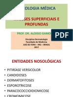 11 Micologia Graduação 2017