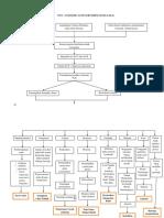 woc SLE.pdf