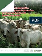 Manual de Bpp Ganado Ext-Int Doble Prop
