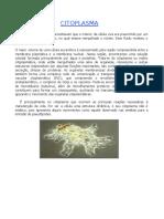 Citoplasma.doc