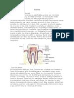 Dentes.doc