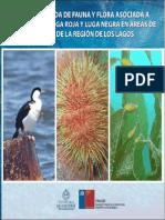 U Arturo Prat Guia Biodiversidad