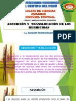 Expocicion de Herbicidas Absocion y Traslocacion