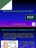 Aula 6- Bibliotecas Genômicas e de CDNA