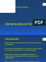 [20] Derrame Pleural Fímico