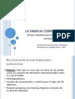 Familia Subsistema y Suprasistema