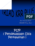 Triad KRR Plus