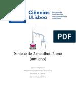 Relatório Química Orgânica Amileno