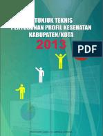 Juknis Penyusunan Profil 2014