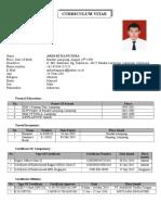 MY CV  ATT II.doc