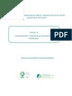 Texto Estudio Modulo 3 Curso Inclusion OEI 2017