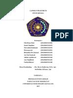 Laporan Fitofarmaka Kelompok 1 Farmasi A
