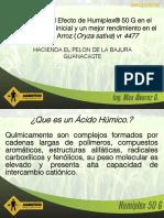 Arroz-Humiplex 50 G