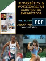 Bionergética e Substratos Energéticos