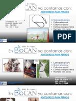 Presentación Accesorios.pptx