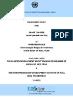 Diagnostic Study Report of Grape Cluster Nasik Maharashtra