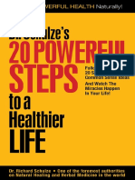 20-Steps to a Healthier Life by Dr Schulze