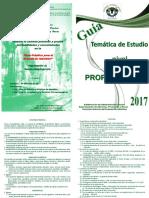 prope2017.pdf