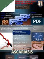 Parasitosis Intestinal Por Nematodos