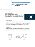 Determinacion de La Eficiencia Termica en Calderos Pirotubulares Final