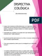 Perspectiva Ecologica 7