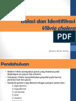 Minggu 6_ Vibrio Cholera