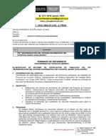 Carta Multiple 980- 2 Pip Del Sistema Informatico (1)