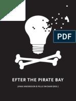 Efter The Pirate Bay - Tobias Nielséns kapitel