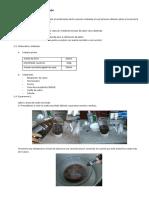 Elaboracion de Nuestro Jabon Paper
