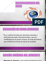 Ambiental diapositivas