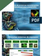 Expresion_de_Proteinas