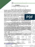 diplomado jung 2009.pdf