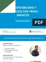 Webinar+Sustentabilidad+y+Negocios+con+Triple+Impacto